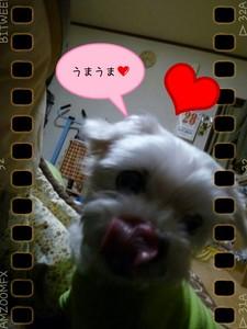 picsay-1367228252.jpg
